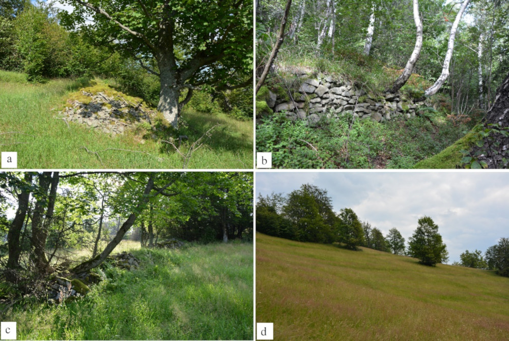 Antropogeniczne formy terenu związane z dawną uprawą ziemi: a) kamienny kopiec, b) kamienny murek, c) miedza, d) terasy rolne