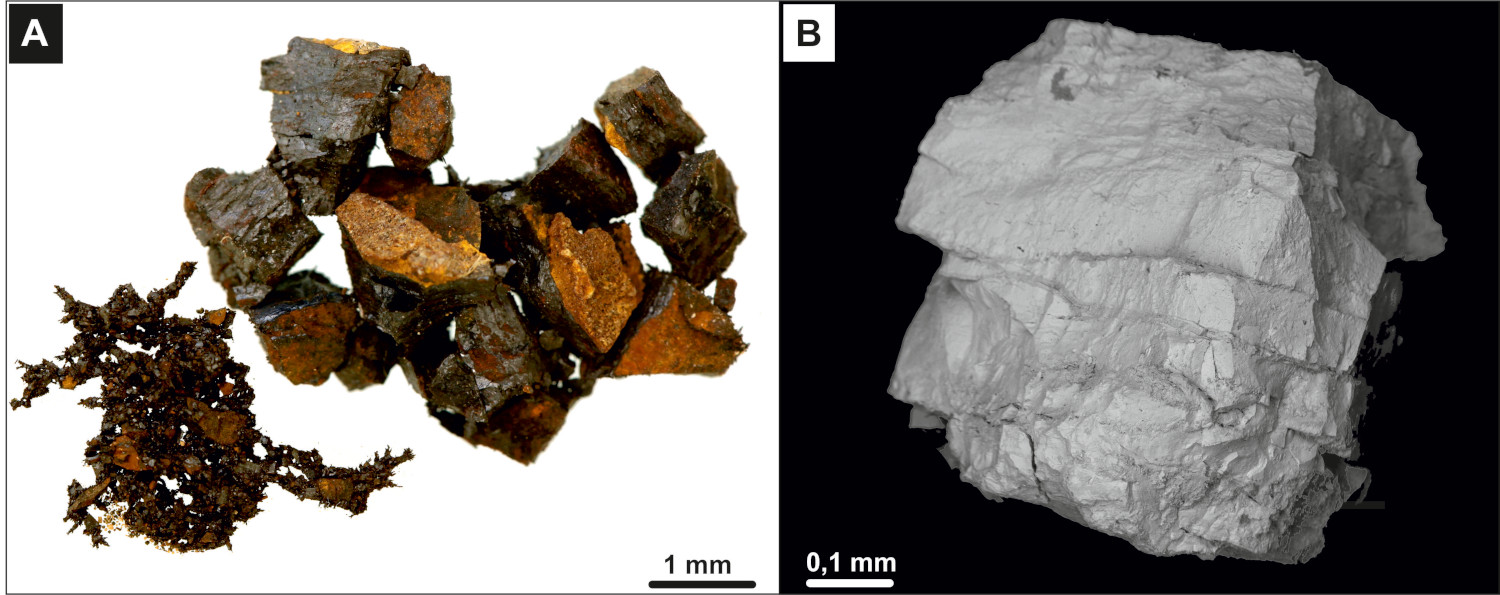 A) Fossil meteorite fragments with light brown weathering zone at Lechówka. B) Magnetic meteoritic dust. Scale bars are 5 mm.