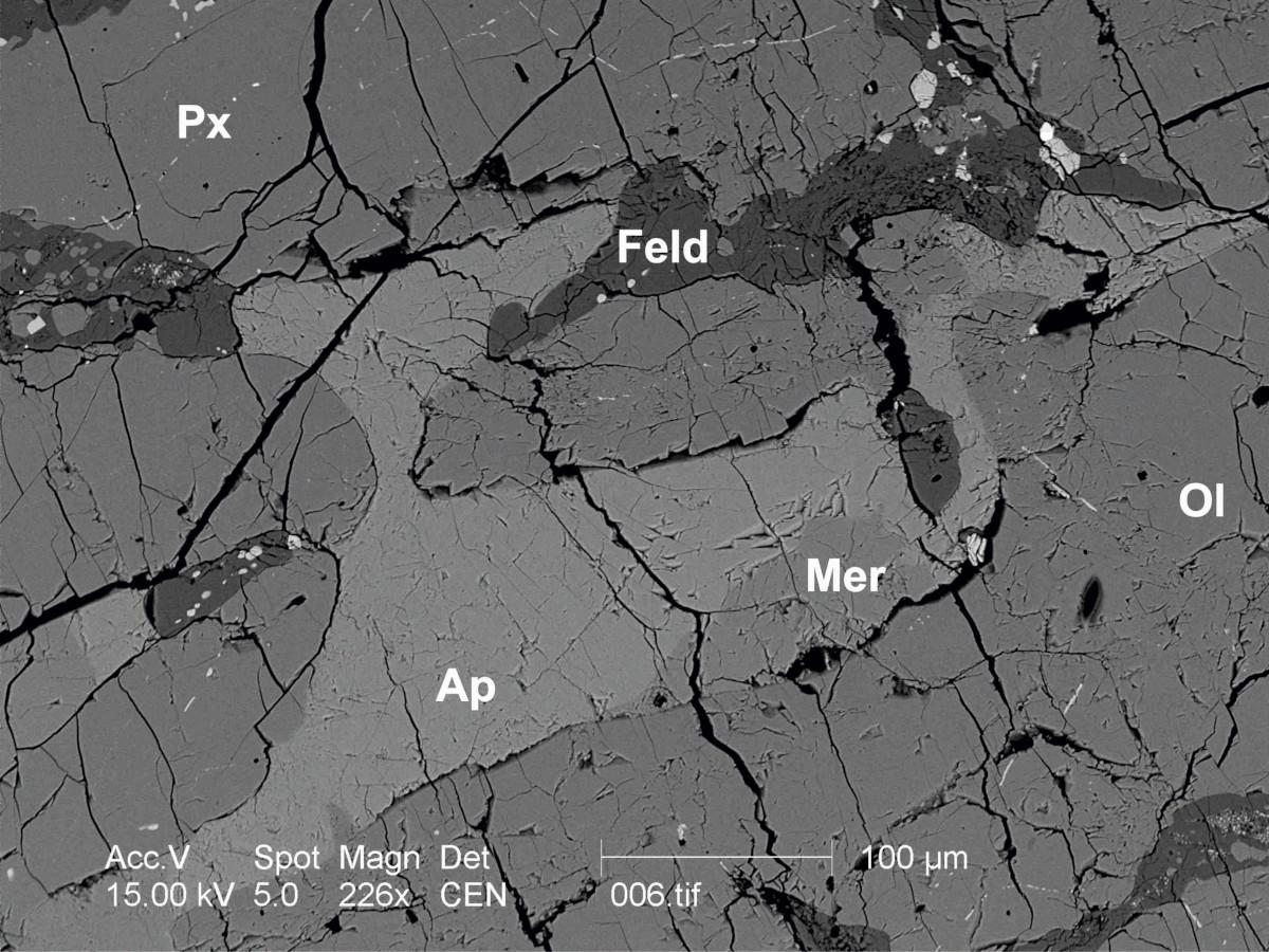 BSE image of a 4549±61 Ma apatite associated with merrillite from the Leoncin meteorite. Ap- apatite, Mer- merrillite, Px- pyroxene, Ol- olivine, Feld- feldspar.