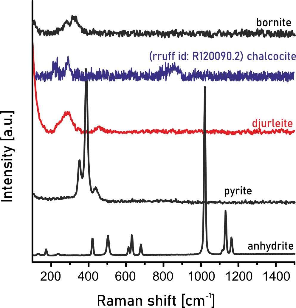 Widmo ramanowskie dla wszystkich minerałów stwierdzonych w próbce pochodzącej z kopalni Lubin. Dodatkowo zaprezentowano przykładowe widmo chalkozynu (baza danych rruff).