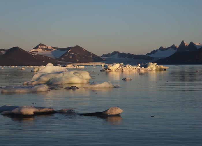 Icebergs on the Hornsund Fjord