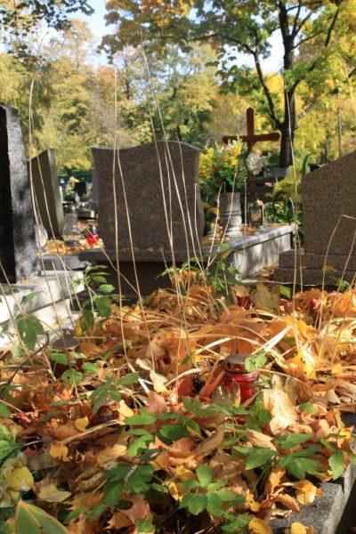 Nagrobki na cmentarzu przy ul. Francuskiej w Katowicach
