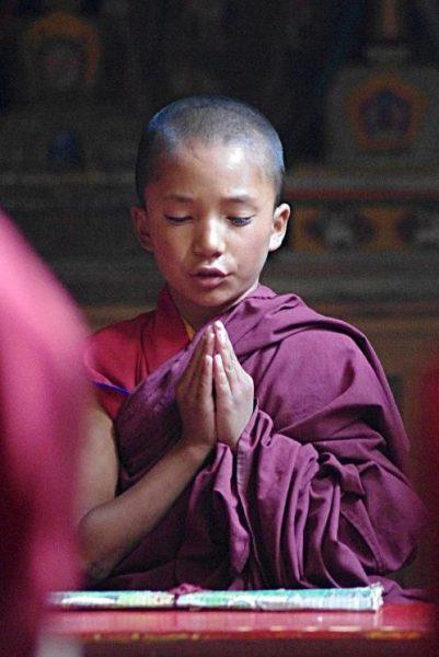 Modlący się młody mnich buddyjski