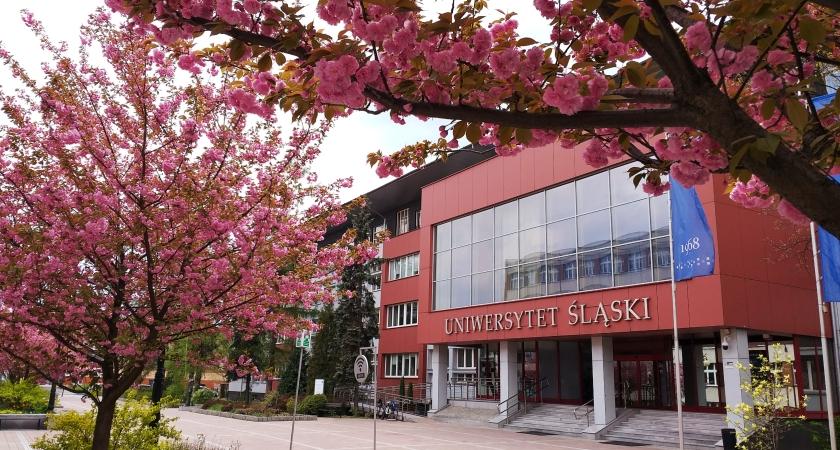 Zdjęcie budynku rektoratu UŚ