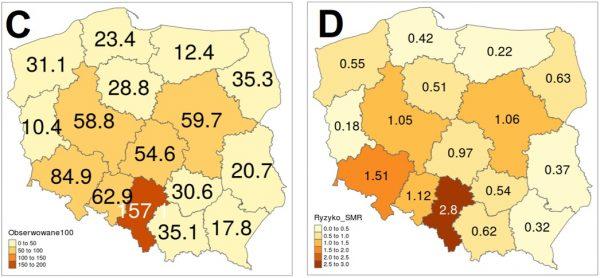 Dwie grafiki prezentujące mapę Polski oraz dane dla każdego województwa: grafika C uwzględnia obliczone przypadki zarażeń w stosunku do 100 tys. mieszkańców, grafika D – względne ryzyko zarażenia – stan na 25 maja 2020 roku