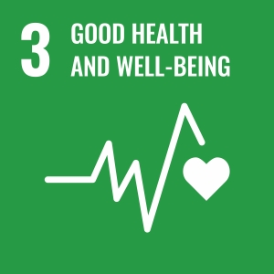 UN Goal 3 icon: the words good health and quality of life on a green background