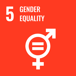 UN Goal 5 icon: the words gender equality on an orange background