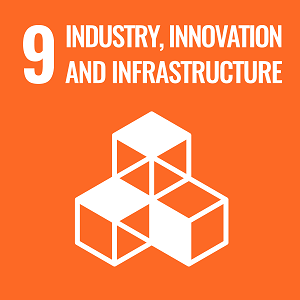 UN Goal 9 icon: the words industry, innovation and infranstructure on an orange background