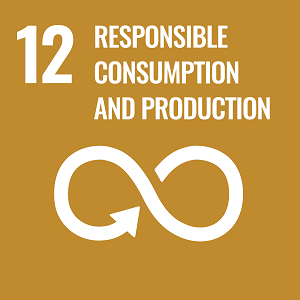UN Goal 12 icon: the words responsible consumption and production on a brown background
