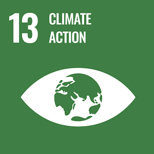 UN Goal 13 icon: the words climate action on a green background