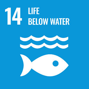 UN Goal 14 icon: the words life below water on a blue background
