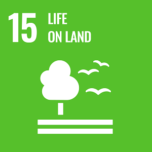 UN Goal 15 icon: the words life on land on a green background