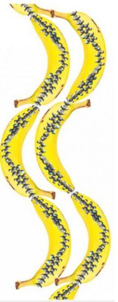 Grafika przedstawiająca cząsteczki układające się w kształt bananopodobny