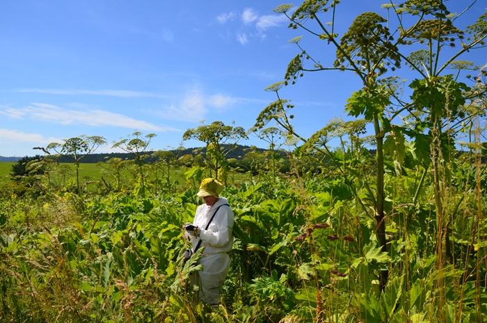 Gromadzenie botanicznych danych w ramach badań terenowych projektu HabitARS.