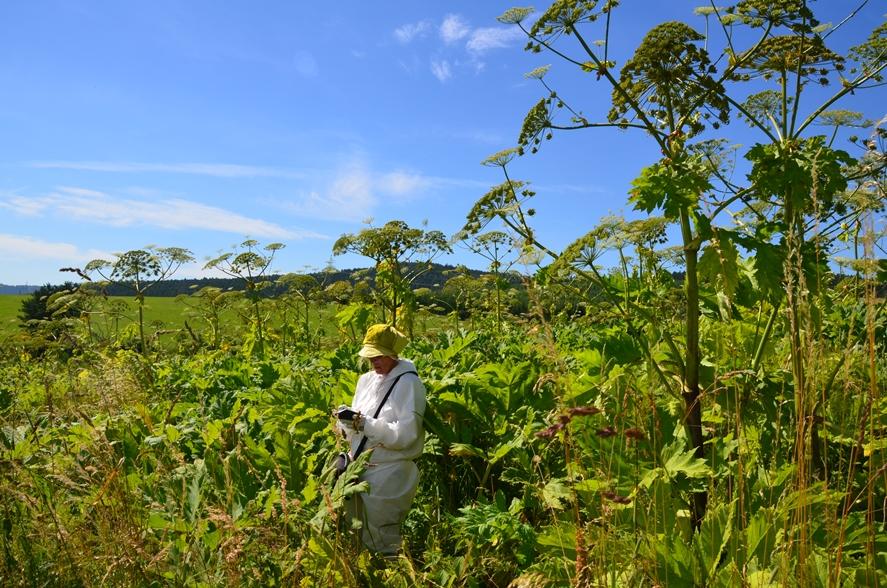 Gromadzenie danych botanicznych podczas badań terenowych w ramach projektu HabitARS