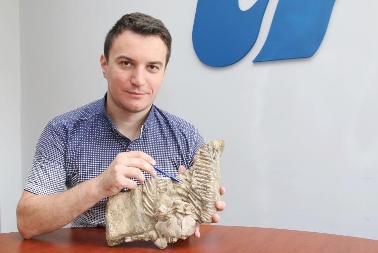 Mgr Dawid Surmik z Wydziału Nauk o Ziemi prezentuje fragment szkieletu gada sprzed 245 mln lat