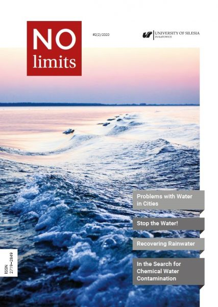 """""""No Limits"""" – cover of the second journal issue"""